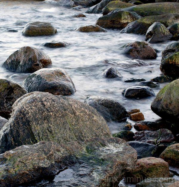 Kivid, Rocks