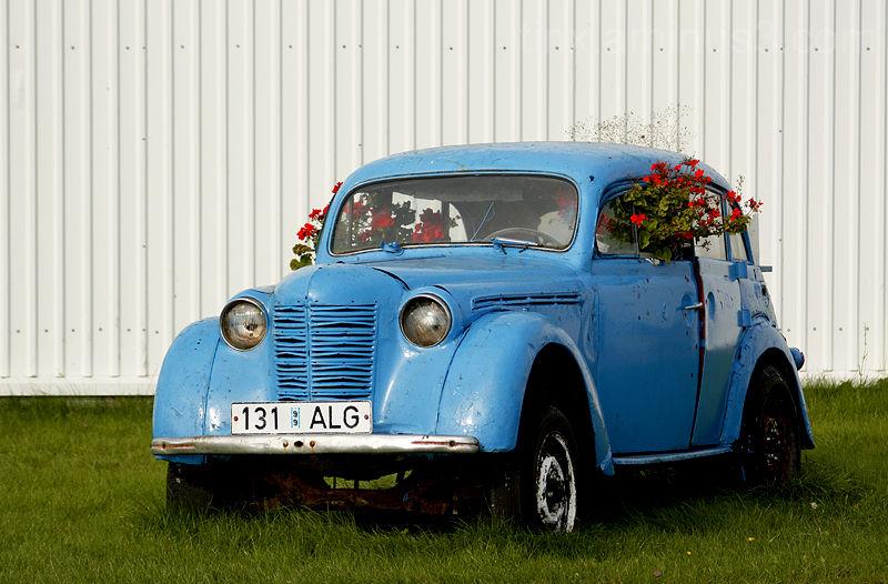 Sinine lillepott, Blue flowerpot