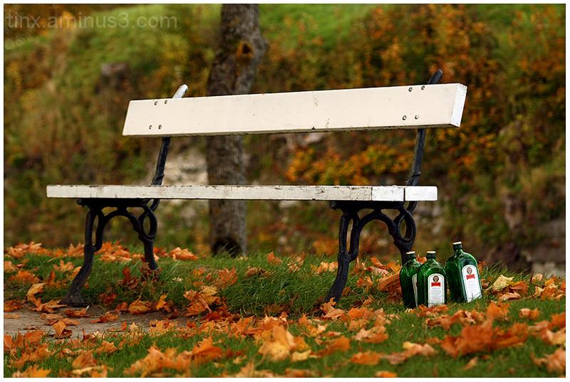 Pargipink, Park bench