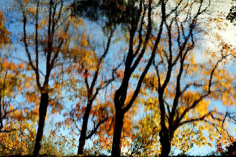 Sügise peegeldus, Autumn reflection