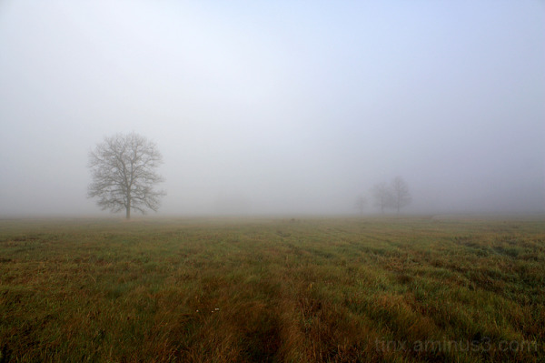 Udu, Fog (2)