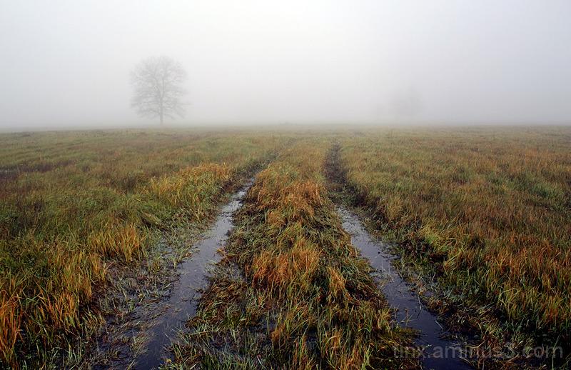 Udu, Fog (3)