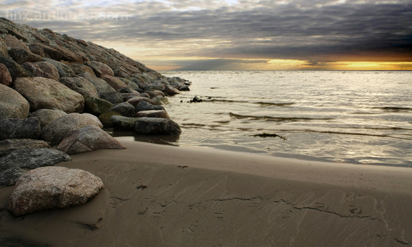 Jäljed liival, Prints in sand