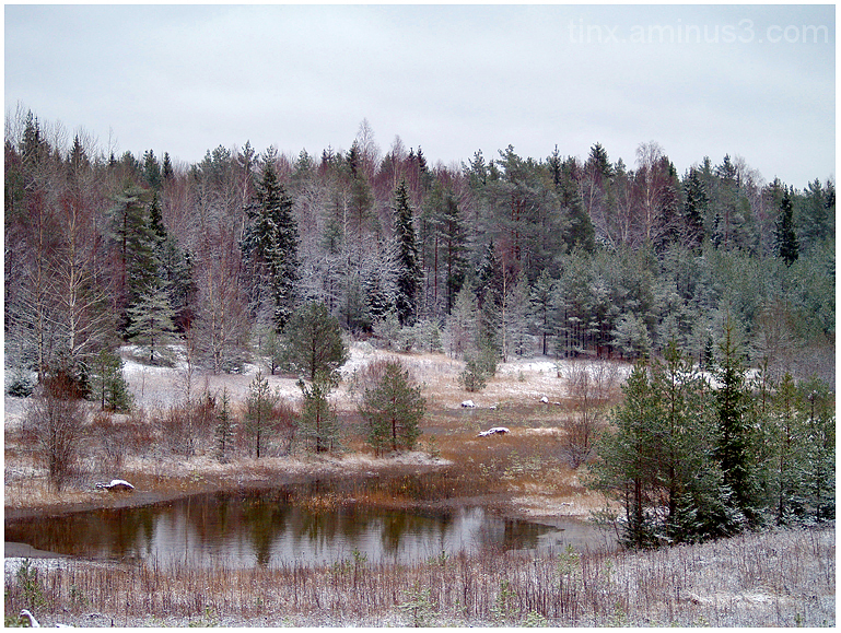 Eestimaa talv, Winter in Estonia