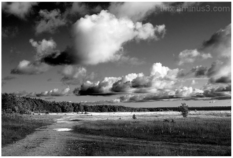 Maastik, Landscape