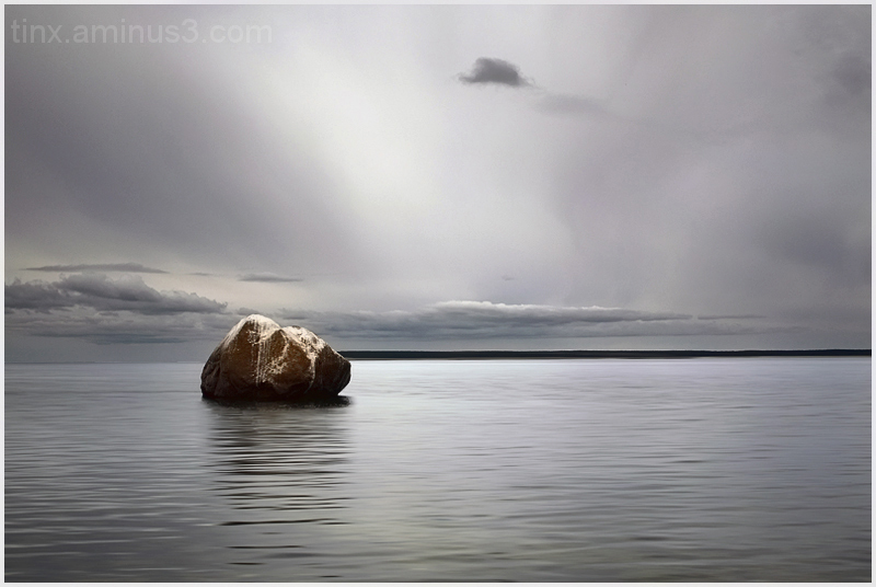 Kivi, Rock