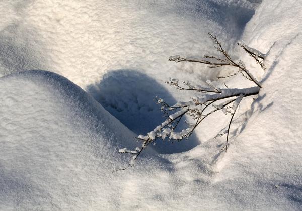 Lumi, Snow