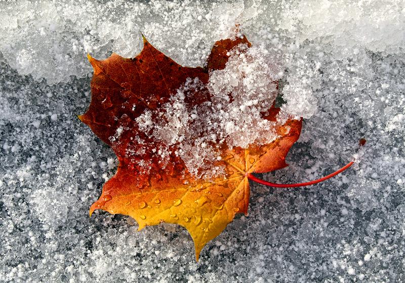 Sügis kohtub talvega, Autumn meets winter