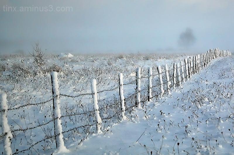 Talvine udu, Winter fog