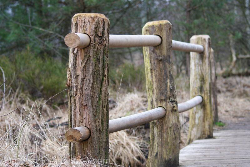 Wooden Bridge, near Oisterwijk, The Netherlands