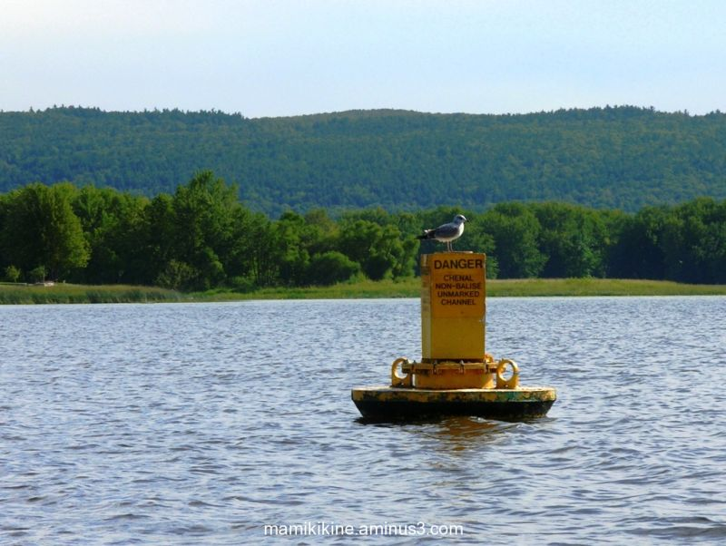 La bouée jaune, The yellow buoy