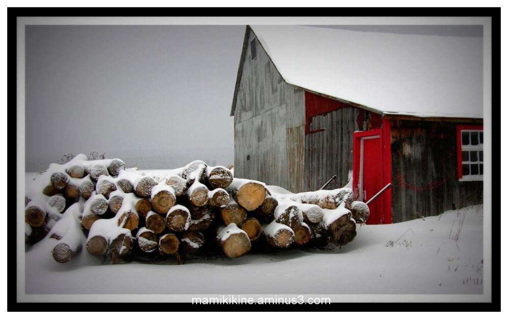 Bois à couper, wood to cut