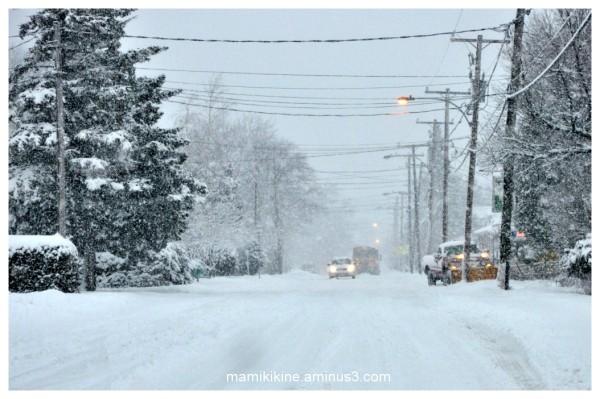 Tempête hivernale, winter Storm