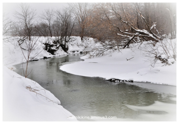 Janvier frileux, chilly January