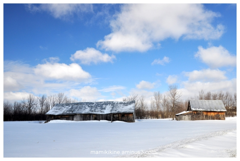 La vieille grange, the old barn