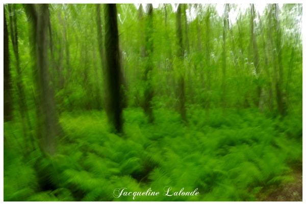 Abstraction en vert, green abstraction