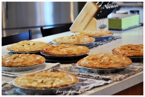 Tartes aux pommes, apple pies