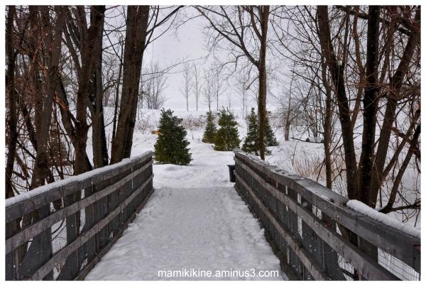 La passerelle, the footbridge