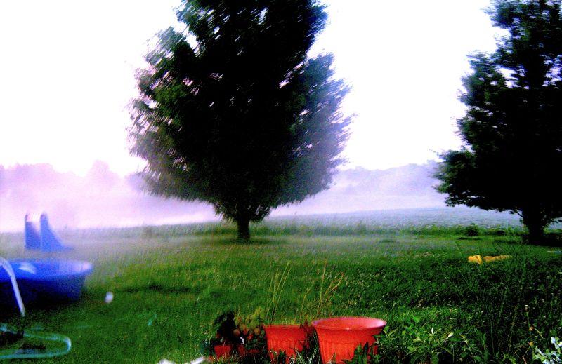the fog creeps ;sun will rise and burn like fire