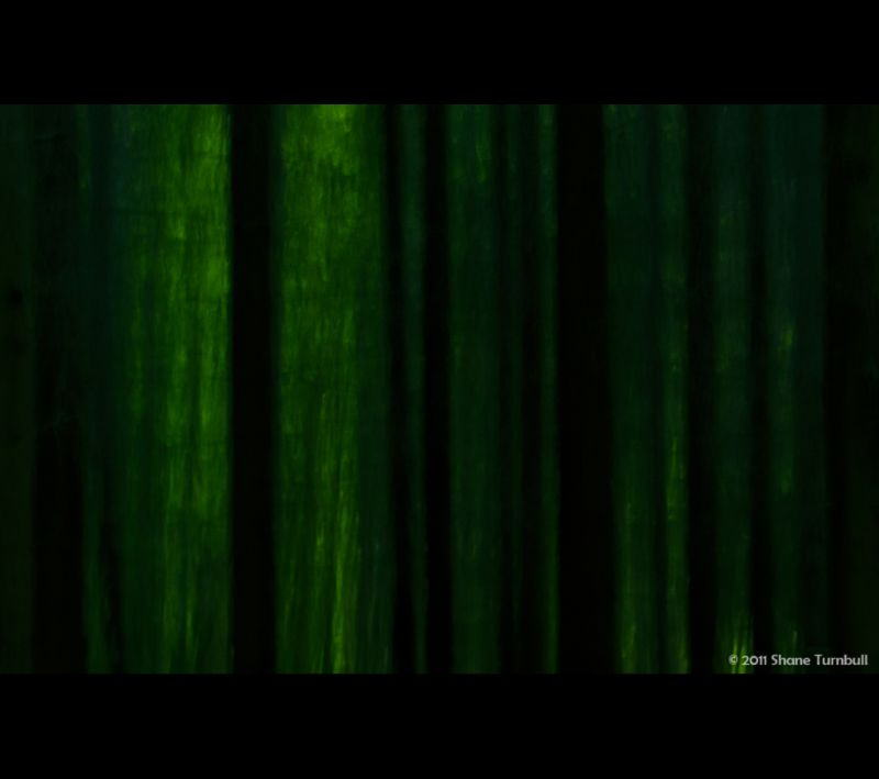 The Barcode Of Nature