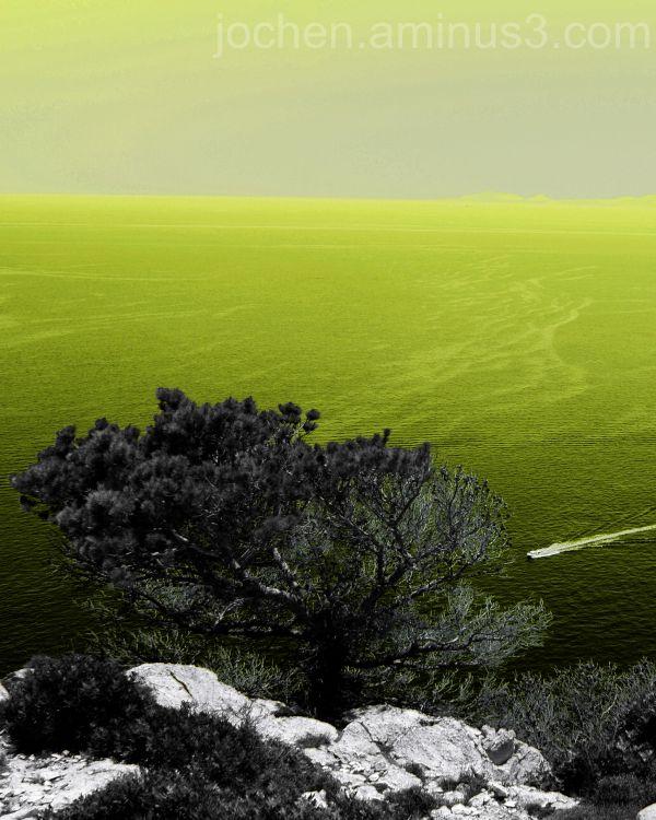 Mallorca aus anderer Sicht