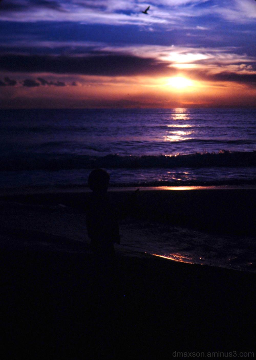Sunset in Laguna