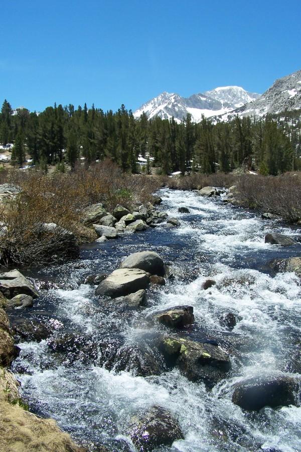 Eastern Sierra Stream