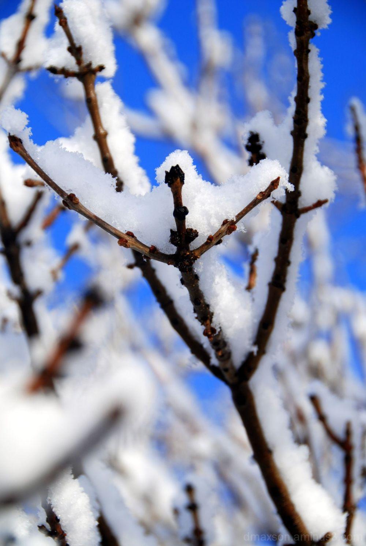 Sticky Snow 3