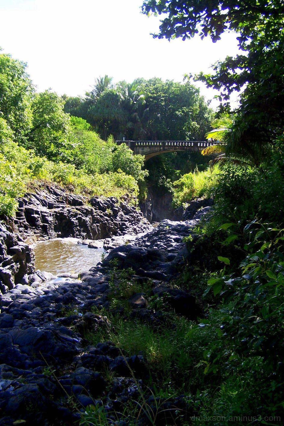 Bridge by Falls