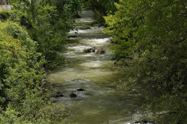 río Oca