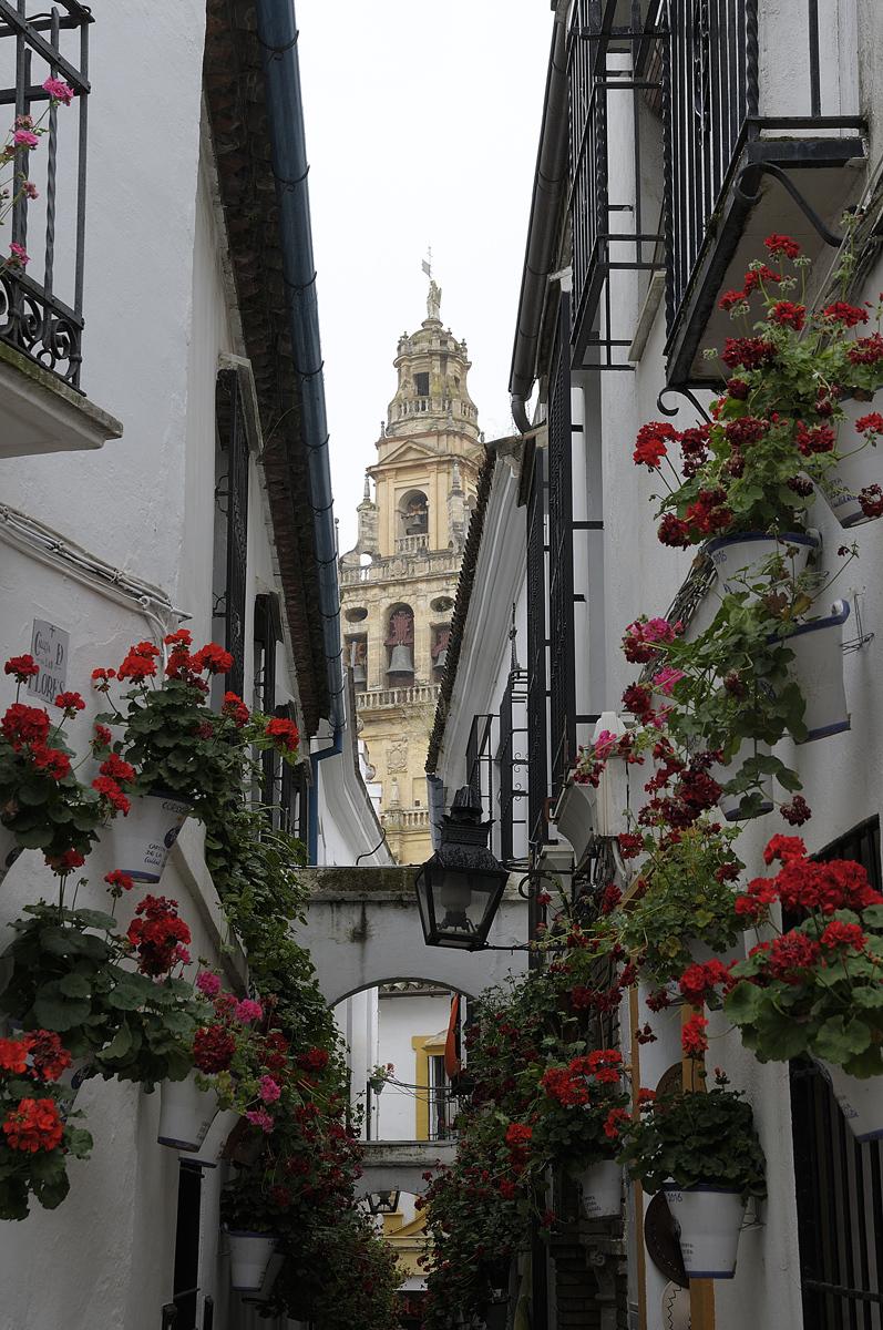 Un trozo de Andalucía. A bit of Andalucia