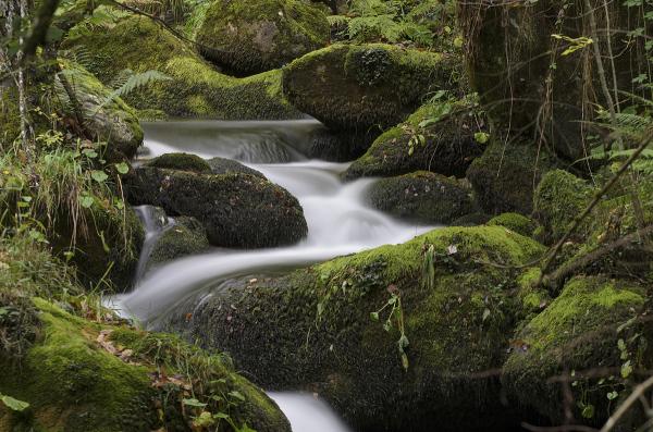Fluyendo. Flowing