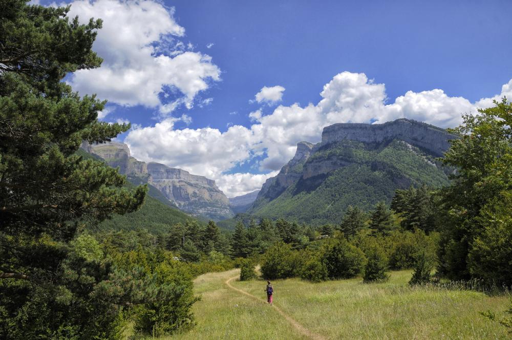 Sendas de la naturaleza. Nature's paths. 2
