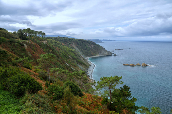 Costa abrupta. Rough coast