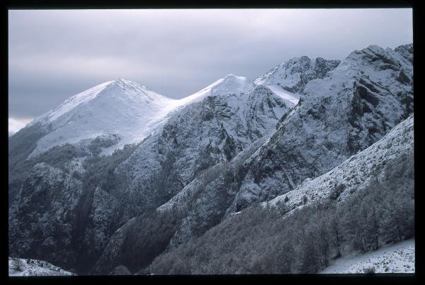 Luz de invierno. Winter light