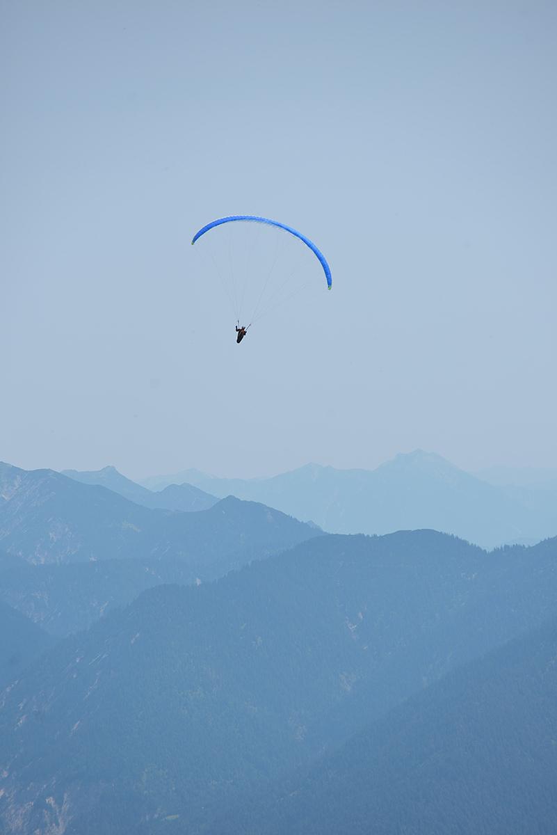 Deslizándose. Gliding.