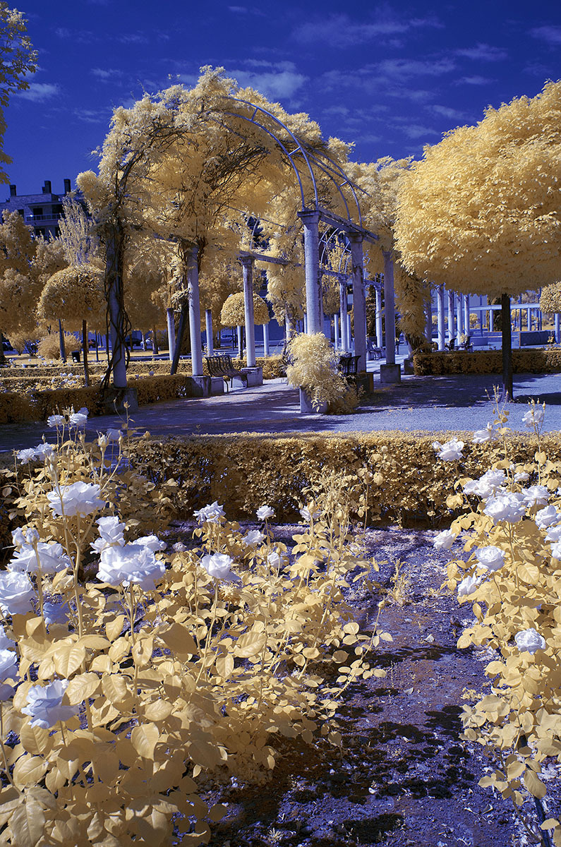 Primavera en infrarrojo. Infrared Spring. #5