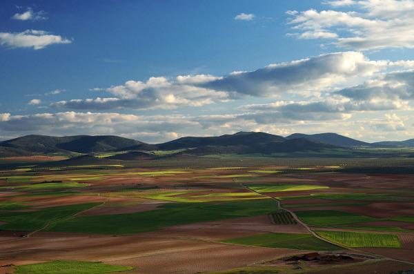 Campos. Fields.