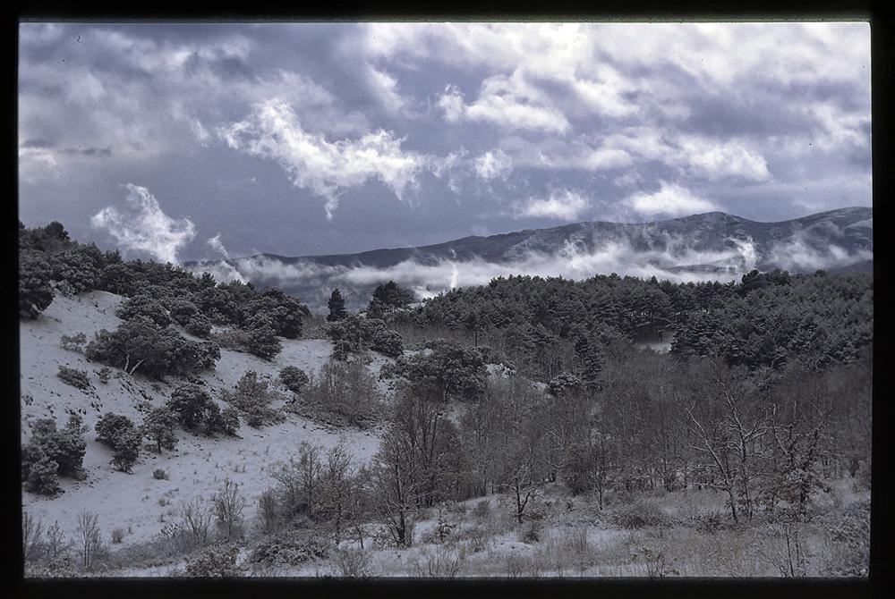Invierno. Winter