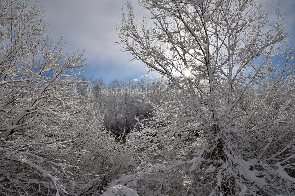Invierno. Winter #6