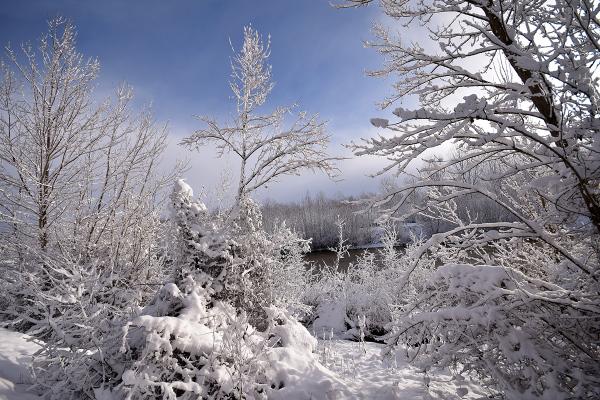 Invierno. Winter #7