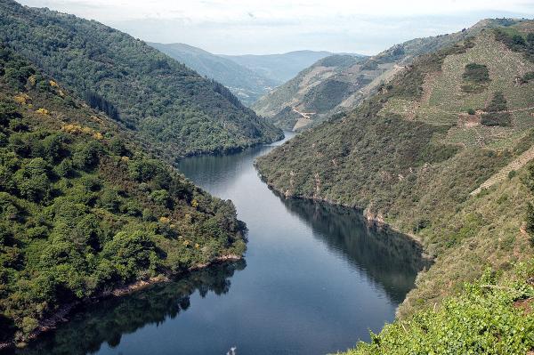 Ribera Sacra. Sacred River. #1