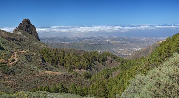 Gran Canaria #6