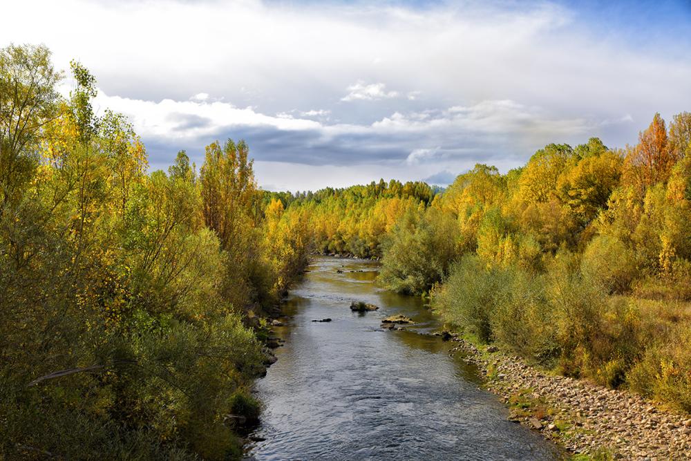 Río otoñal. Autumnal river