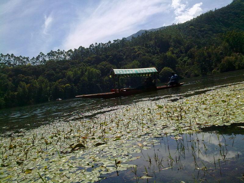 lake safari