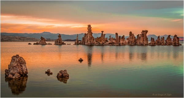 An eerie golden hour taking in the tufa's at Mono