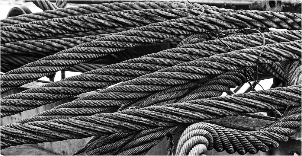 Rusty Cables B&W