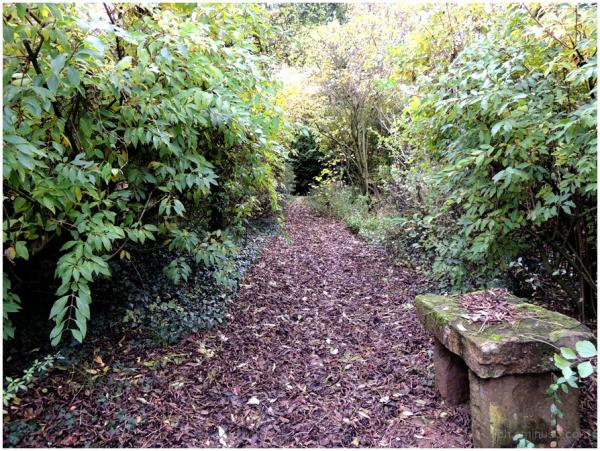 Le chemin du jardin