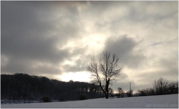 Nuances d'hiver ardennais