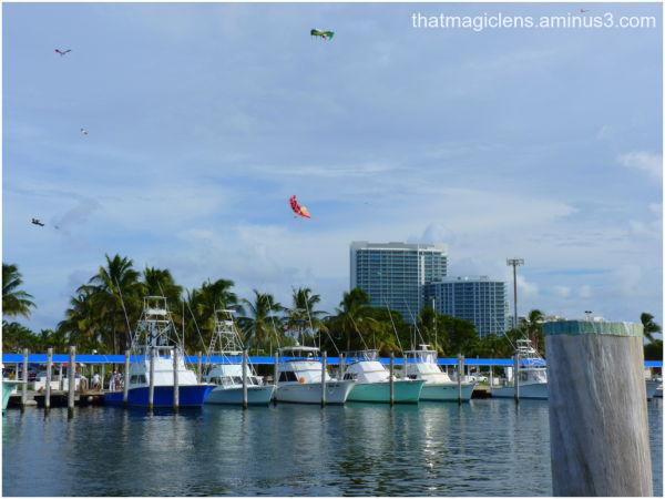 Kites, Marina, Miami